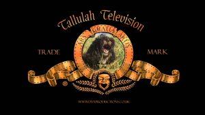 Tallulah TV